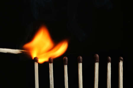 Lit match igniting others on black background, closeup. Space for text
