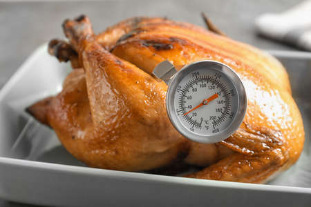 Roasted turkey with meat thermometer in baking dish
