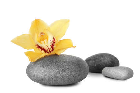 Spa stones and beautiful orchid on white background