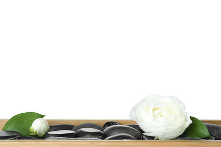 Wooden tray with spa stones and ranunculus flowers against white background Stock Photo