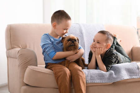 Portrait of cute boys with funny Brussels Griffon dog at home. Loyal friends Фото со стока
