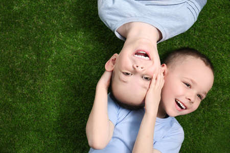 Portrait of cute twin brothers on green grass, top view. Space for text Banco de Imagens