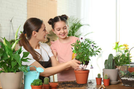Mother and daughter transplanting plant at home
