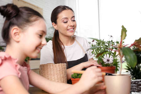 Mother and daughter taking care of potted plants at home