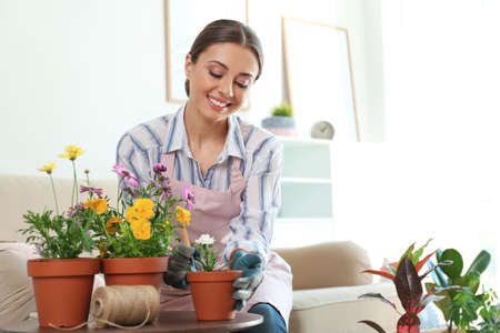 Young woman taking care of potted plants at home