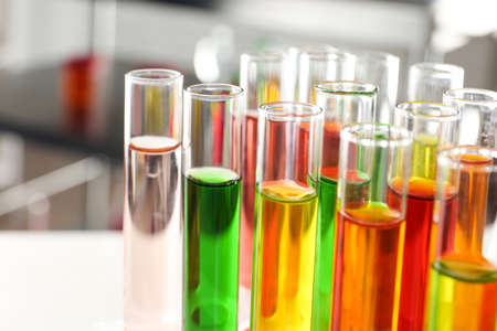 Test tubes with samples in chemistry laboratory, closeup Banco de Imagens