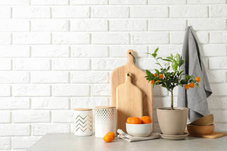 Composition with potted citrus tree and fruits on table against brick wall. Space for text Standard-Bild - 124990691