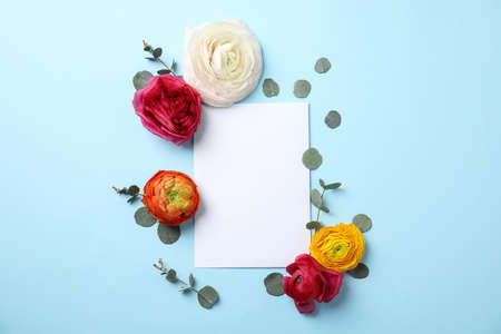 Flat lay composition with spring ranunculus flowers and card on color background. Space for text