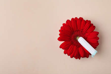 Flower and tampon on color background, flat lay with space for text. Gynecological care Stock Photo