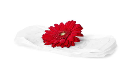 Menstrual pads and flower on white background. Gynecological care
