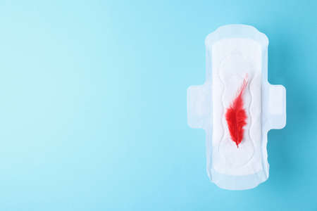 Menstrual pad and red feather on color background, top view with space for text. Gynecological care Stock Photo