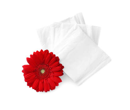 Packed menstrual pads and flower on white background, top view. Gynecological care