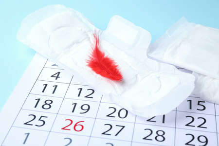 Menstrual pad with red feather and calendar on color background, closeup. Gynecological care