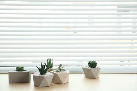 Window with blinds and potted plants on sill, space for text