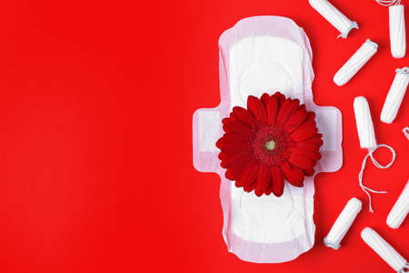 Different feminine hygiene products and flower on color background, flat lay with space for text. Gynecological care