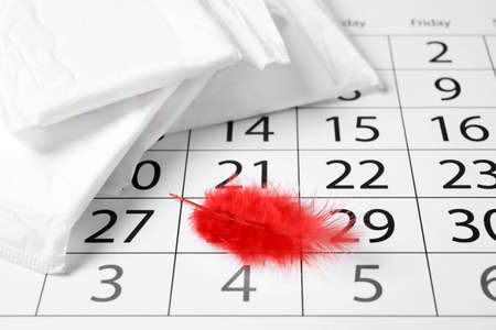 Packed menstrual pads with red feather and calendar, closeup. Gynecological care