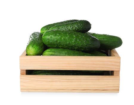 Wooden crate full of fresh ripe cucumbers on white background Banco de Imagens