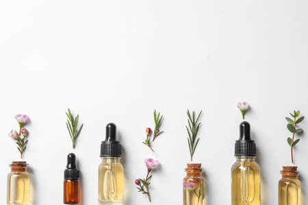 Composición plana con botellas de aceite de árbol de té natural sobre fondo blanco. Foto de archivo