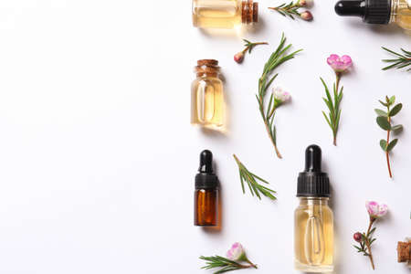 Flat lay composition with bottles of natural tea tree oil on white background