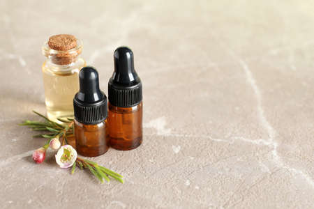 Bottles of natural tea tree oil and plant on table, space for text