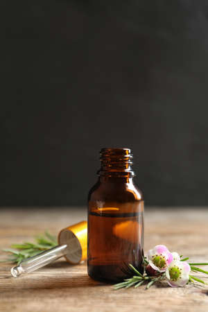 Bottle of natural tea tree oil and plant on table against dark background Banco de Imagens