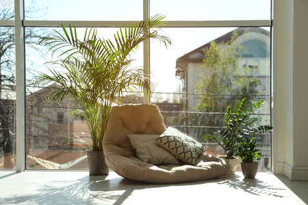 Cozy place with armchair pillow and potted plants at home Standard-Bild - 124992322