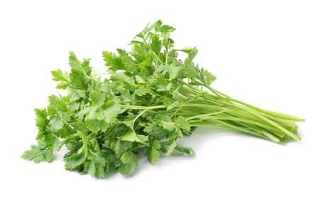 Verse groene biologische peterselie op witte achtergrond Stockfoto