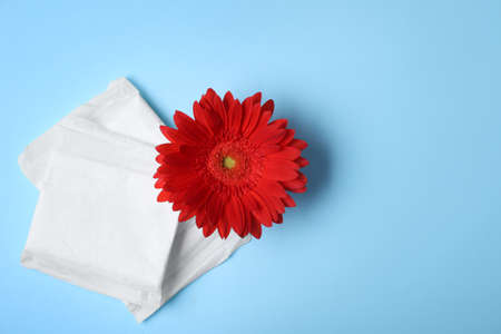 Flat lay composition with menstrual pads and gerbera flower on color background, space for text. Gynecological care Stock Photo