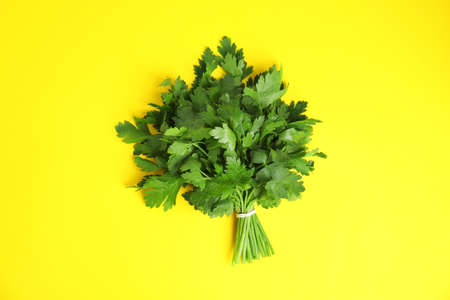 Bunch of fresh green parsley on color background, view from above