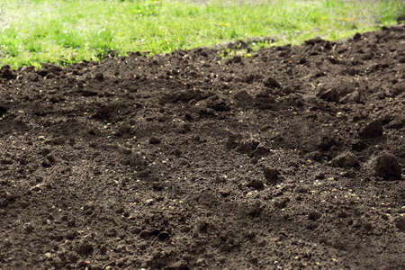 Textured ground surface as background, closeup. Fertile soil for farming and gardening