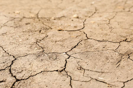 Cracked ground surface as background, closeup. Thirsty soil