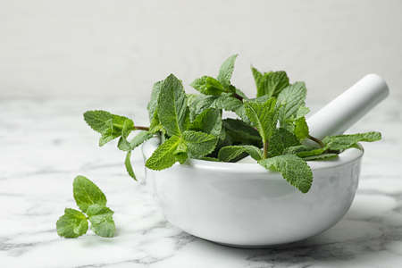 Mortar with fresh green mint and pestle on table