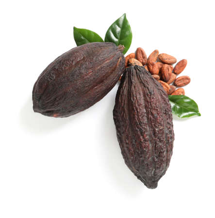 Composition with cocoa pods on white background, top view