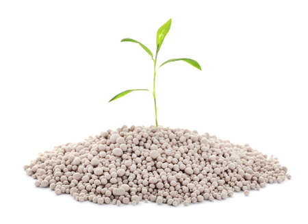 Pile of chemical fertilizer and green plant isolated on white. Gardening time