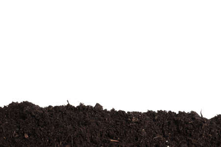 Layer of fresh soil isolated on white. Gardening time