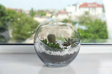 Glass florarium with different succulents on windowsill Stockfoto