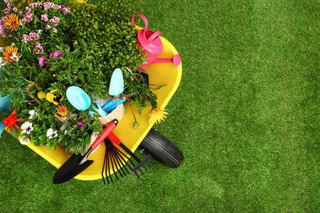 Carretilla con flores y herramientas de jardinería sobre césped, vista superior. Espacio para texto Foto de archivo
