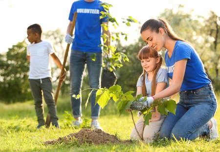 Kinderen planten bomen met vrijwilligers in park