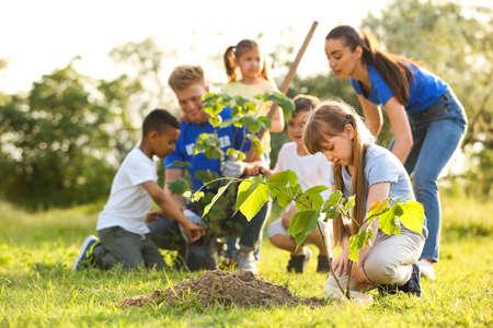 Kids planting trees with volunteers in park Stock fotó