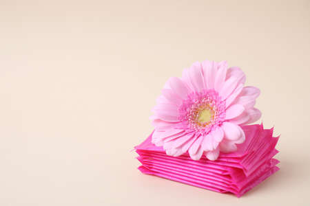 Menstrual pads and flower on beige background, space for text. Gynecology concept Banco de Imagens