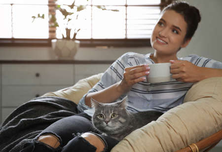 Young woman with cute cat on armchair at home. Pet and owner