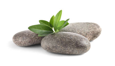 Spa stones with green branch isolated on white