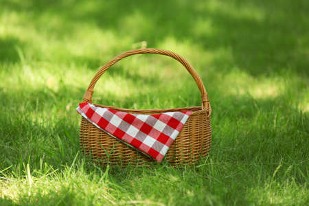 Wicker basket with blanket on green grass in park. Summer picnic