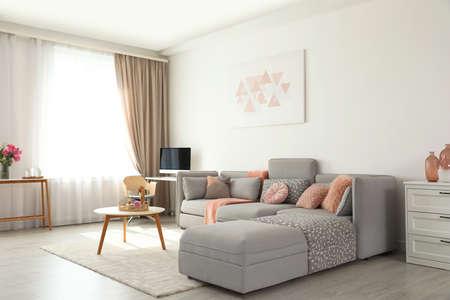 Nowoczesne wnętrze salonu z wygodną sofą Zdjęcie Seryjne