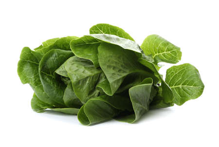 Fresh green bok choy cabbage isolated on white Banque d'images