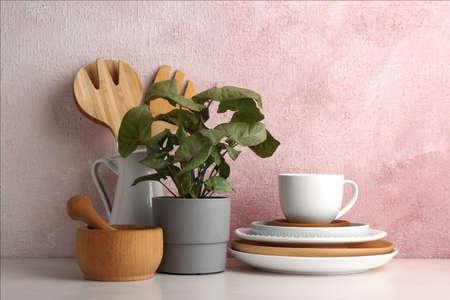 Grüne Pflanze und anderes Geschirr auf dem Tisch in der Nähe der Farbwand. Modernes Innendesign Standard-Bild