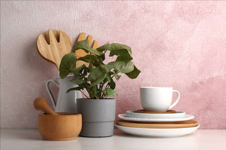 Green plant and different kitchenware on table near color wall. Modern interior design Stock Photo