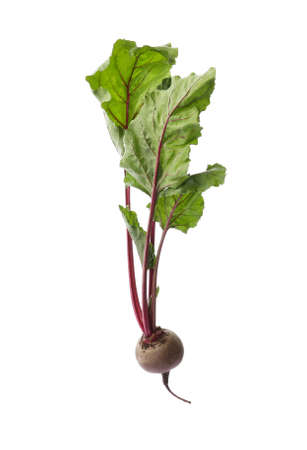 Fresh beet with leaves on white background