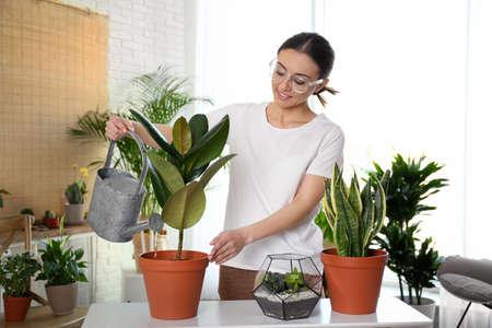 Mujer joven regar la planta en maceta en casa