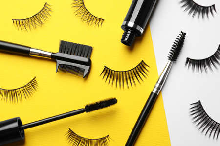 False eyelashes, mascara and brushes on color background, flat lay